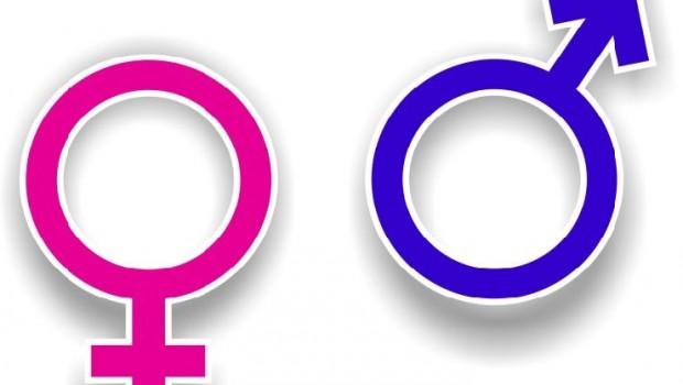 gender na UMK