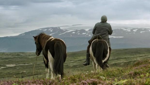 Kino islandzkie
