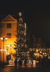 Choinka na Rynku Staromiejskim nocą